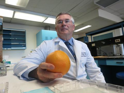 Dr. David Bailey in his laboratory space