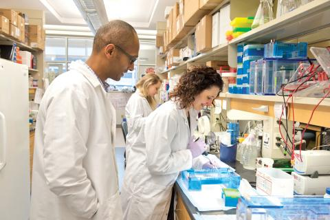 From left: Dr. Asfaha, Lawson scientist; Hayley Good, PhD candidate; and Elena Fazio, postdoctoral fellow, working in Dr. Asfaha's lab.